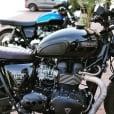 Motone Classic Cafe Racer custom Knee Pads - Black Pinstripe